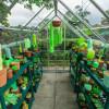 プラスチック素材で植物のある温室を再現したインスタレーションアート「Everyday Plastic Objects Fill a Scottish Greenhouse With Faux Flora」