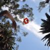 ドローンを使わなくても、Goproでの空中撮影を可能にする「Birdie」