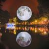 月を精巧に象った23フィートの月のレプリカ「Replica of the Moon」