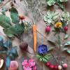 普通紙をジューシーな野菜に変身させるアーティスト「Ann Wood」