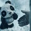 無くしたパンダのぬいぐるみを見つけるまで 忘れ物探しタグ「Tile」のプロモーションムービー