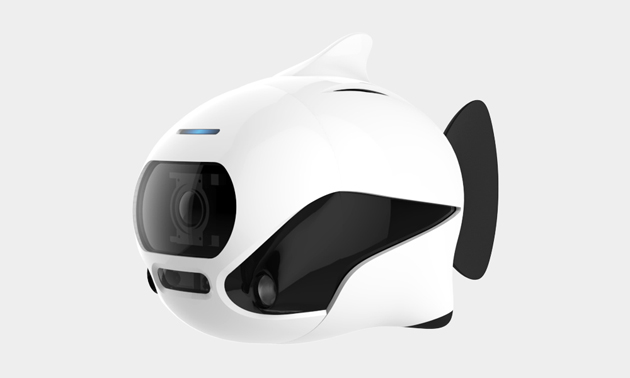 BIKI-Underwater-Fish-Drone