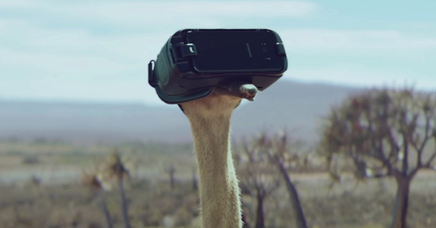 Samsung-Official-TVC-Ostrich-2