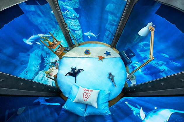airbnb-ubi-bene-paris-aquarium-shark-suite-designboom-02