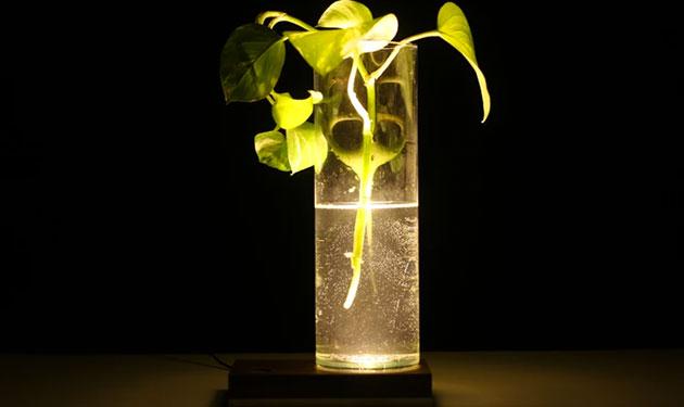 baselamp3