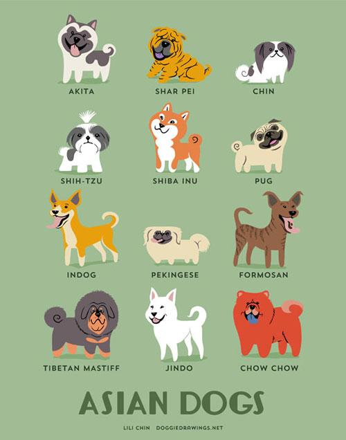 起源地域別に描かれたドックイラストシリーズdogs Of The World