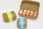 eggcase