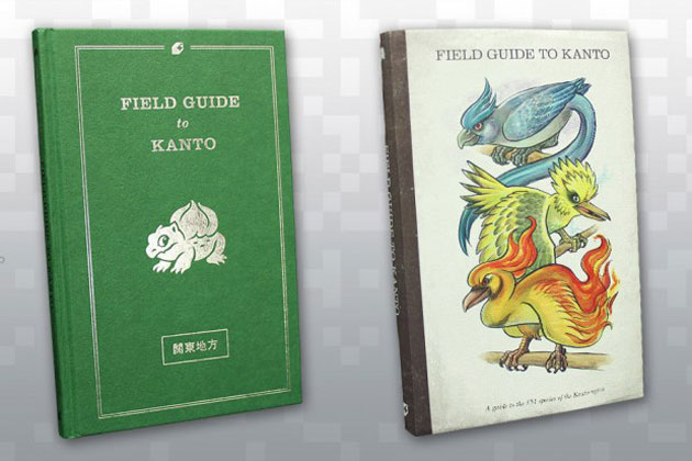 field_guide_to_kanto_4-620x413
