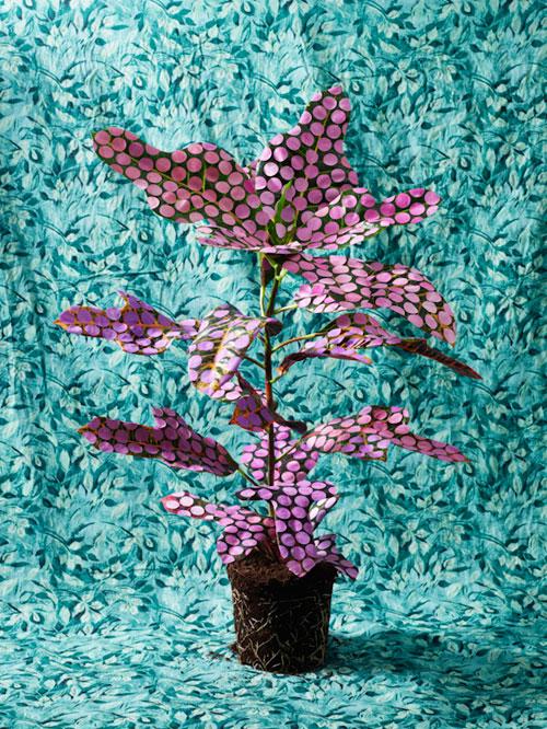 floralpatterns3