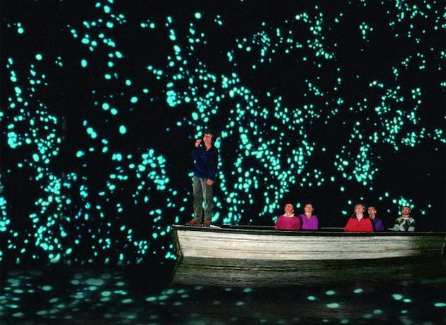 glowwormcaves3