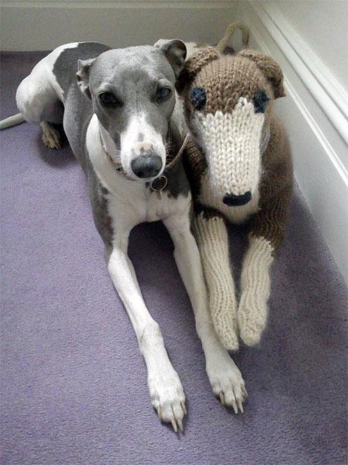 knitteddog3