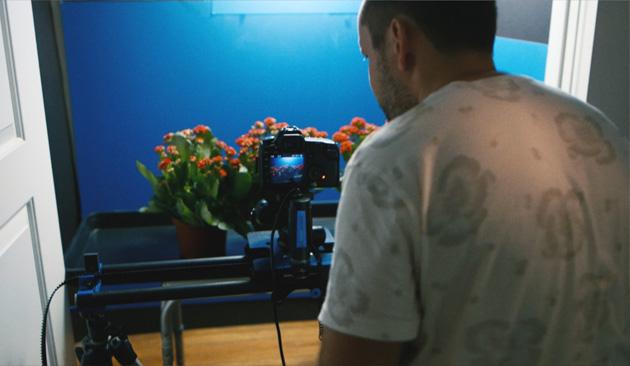 spring_movie02